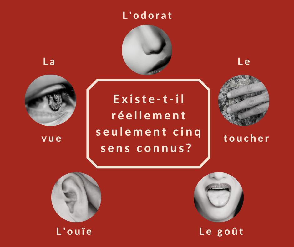 Les sens avec Carole Laurendeau